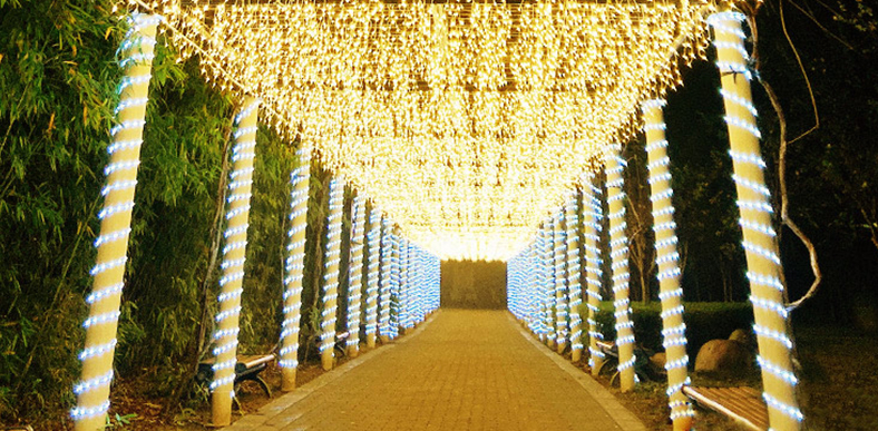 LED圣诞灯方案开发